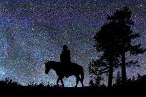 sky-astronomy-horse
