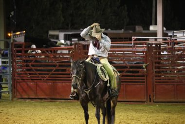 cowboy-849498_960_720